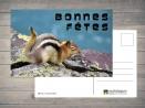 Carte postale Bonnes Fêtes par Esprit Combi - 2,00 €