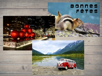 PACK : 2 postcards + 1 free