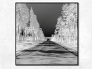 Norvège - 50x50